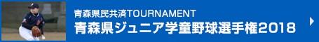 青森県民共済TOURNAMENT 青森県ジュニア学童野球選手権2018