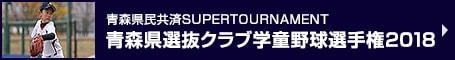 青森県民共済SUPERTOURNAMENT 青森県選抜クラブ学童野球選手権2018