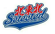 北東北選抜学童野球チーム