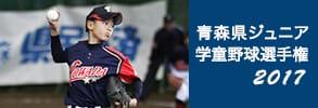 青森県ジュニア学童野球選手権2017