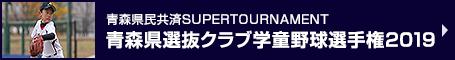 青森県民共済SUPERTOURNAMENT 青森県選抜クラブ学童野球選手権2019