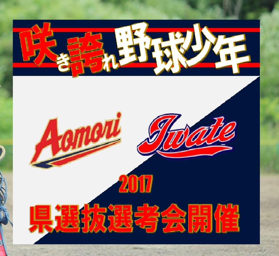 http://bigwest-baseballcup.com/tournament2017/upload/rkrk.png